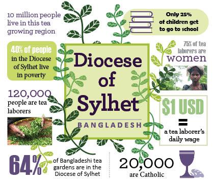 Bangladesh - Stats for the Diocese of Sylhet and Bangladesh tea farms