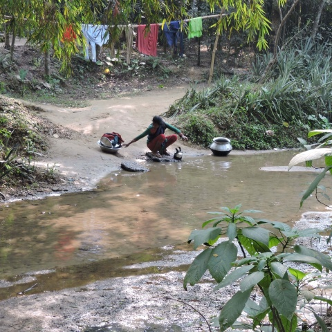 Bangladesh - Tea plantation labor lines rarely have running water or sanitation, meaning streams and rivers are laborers\\\' only source of water for drinking and cooking, bathing, and cleaning