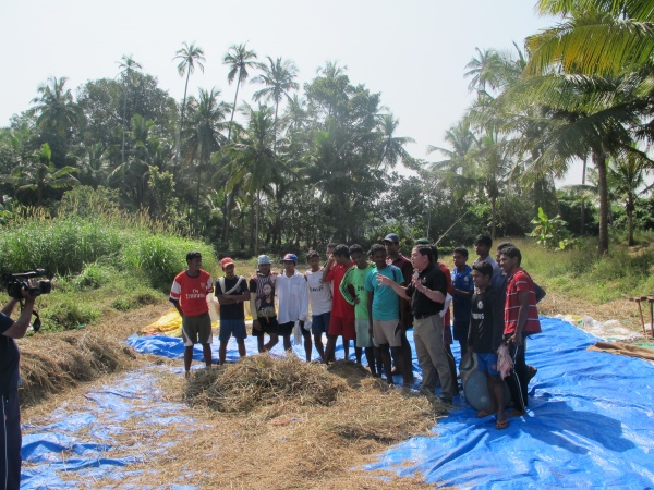 Executive Director, Deacon Rick Medina's harvesting wheat with the MSFS Seminarians - India