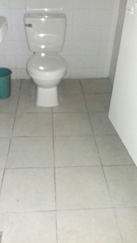 El Salvador - new bathroom tile and toilet