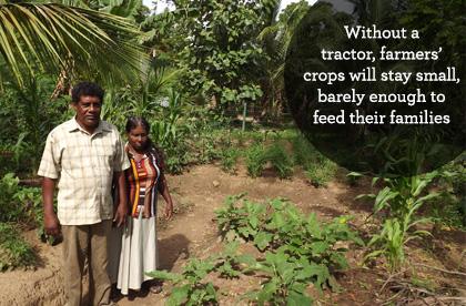 Small crops in Sri Lanka