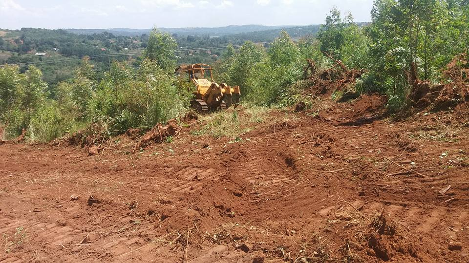 Uganda - ground cleared for new dining hall (2)