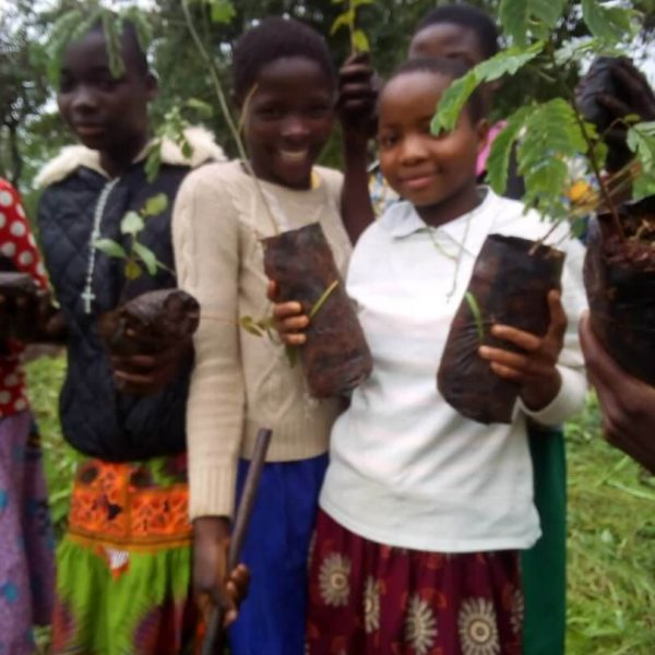 Planting Trees with Catholic Career Clinic in Malawi