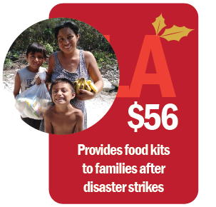Christmas catalog FOOD KITS FOR DISASTER VICTIMS